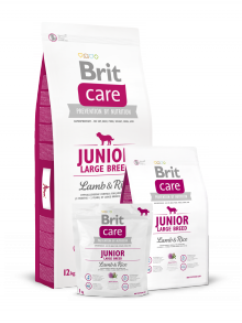 Brit Care Junior Large Breed jagnięcina z ryżem 1kg
